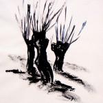 Wilgen 2015. Oostindische inkt op rijstpapier, 50 bij 65 cm, incl. lijst. verkocht