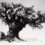 Olijfboom, 2016. Oostindische inkt op papier, 70 bij 90 cm